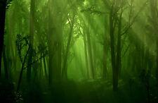 Framed Print - Vibrant Green Fantasy Forest (Picture Mythological Mythology Art)