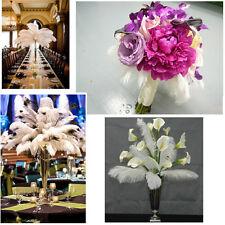 "Lots 10pcs Natural Ostrich Feathers 16-18"" / 40-45CM White Exquisite Home Decor"
