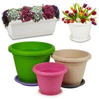 Rattan Plant Flower Round Rectangle Stackable Pot & Saucer Herb Planter Coloured