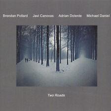 "Brendan Pollard ""Two Roads"" New CD [ Tangerine Dream ]"