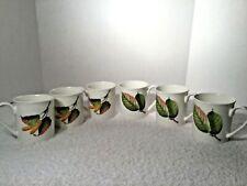 6 VILLEROY & BOCH PARKLAND Coffee Mugs Cups NEW