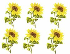 6 Vintage Reproduction Sun Flower Waterslide Decals #24