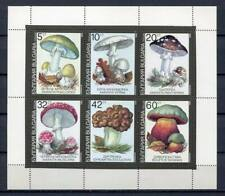 29711) BULGARIA 1991 MNH** Nuovi** Mushrooms S/S