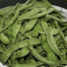 140 Tenderette Green Bush Bean Seeds - Everwilde Farms Mylar Seed Packet