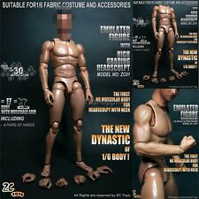 "ZC TOYS 1/6 Male Muscular Figure Body Doll No Neck For 12"" Hot Toys Head Sculpt"