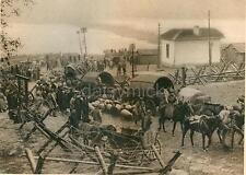"Bulgarian Army Baggage Column Wallachia Romania 1916 World War 1 7x5"" Photo Repr"