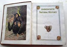 HARMSWORTH NATURAL HISTORY 3 vol set Lydekker, Johnson, Ainsworth, 1910-11