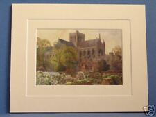 WINCHESTER CATHEDRAL HAMPSHIRE VINTAGE DOUBLE MOUNTED HASLEHUST PRINT 10X8 c1930