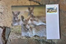 GREY KANGAROO INTERNATIONAL PRE PAID POSTCARD AUSTRALIA POST 90C