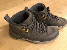RARE! Air Jordan Retro 12 Dark Grey