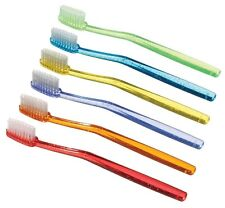 Plak Smacker UnPasted Small Head Disposable Toothbrush (20 count)
