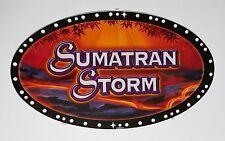 "NEW SUMATRAN STORM SLOT MACHINE GLASS IGT TOPPER 10.125"" X 17.625"" 94963100"