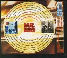 MR BIG Wild World 3 TRACK CD SINGLE ATLANTIC GERMANY