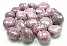 TUMBLED - (1) Large LEPIDOLITE Crystals w/Description Card- Healing Reiki Stone