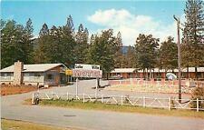 Lakehead California~Ranch Fence, Umbrella @ Lake Villa Motel Pool~1960s Postcard