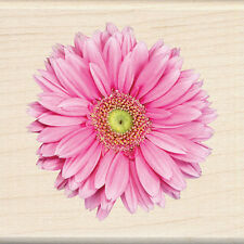 Inkadinkado rubber stamp Pink Gerbera Daisy wood mounted, Flower