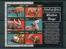 Liberian Sheet Animal Kingdom Postal Stamps