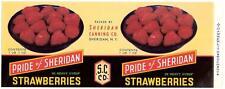 Wholesale Dealer Lot 25 Pride of Sheridan Strawberries Can Label Sheridan, N.Y.
