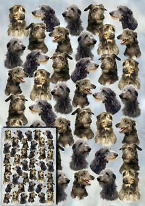 Deerhound Dog Gift Wrapping Paper by Starprint - Semi gloss with matching card