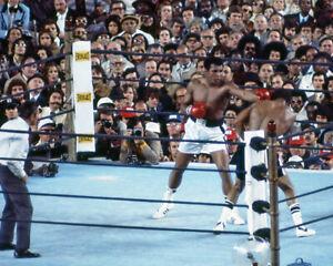 1976 Heavyweight Fight MUHAMMAD ALI vs KEN NORTON 8x10 Photo 'Fight III' Poster