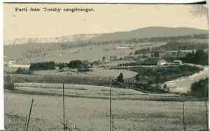 Sweden Torsby old postcard