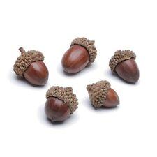 Faux Acorns 120 grams appx 29 Potpourri Candles Crafts Naturals Fall Decor