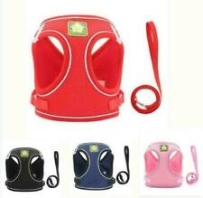 (H015) Cat, Small Dog Adjustable Mesh Harness & Lead Various Colours
