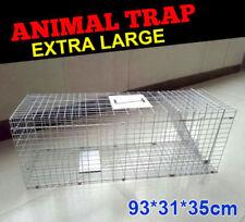 Extra Large Folding Humane Live Animal Trap Cage Possum Fox Rat Cat Rabbit Catch