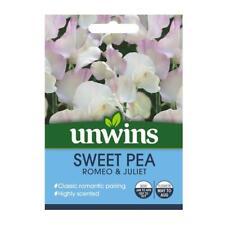 Flower Seeds Sweet Pea Romeo & Juliet Purple White Cream Ideal For Cut Flowers