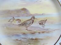 "ROYAL DOULTON SIGNED HOLLOWAY 9½"" HP BIRDS DISPLAY PLATE DUNLIN (Ref3492)"