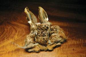 Hareline Dubbin - Hares Mask with Ears