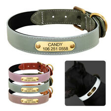 Leather Dog Collar Personalised Reflectived Soft Padded for Small To Large Dogs