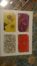 Israel Bezeq phone cards-a set of 4 different flowers different colors