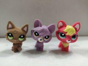 3pcs/Lot LPS Toy  pet shop fox #2642#1536#2440  kid toy