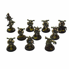 Death Guard 10 Converted Plague marines #2 Pro Painted Chaos Space Nurgle