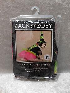 Zack & Zoey Witchy Business Halloween Dog Costume XS-XL