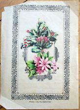 1900 Victorian Diecut Scrap Flowers on Fancy Presentation Paper - 38
