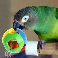 Funny Bird Parrot Pet Chew Ball Toys Swing Cage Cockatiel Parakeet Pet Supplies-