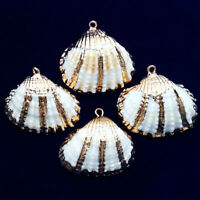 10Pcs 28x30x10mm Natural Gold Plated White Spiral Seashell Pendant A-27BK