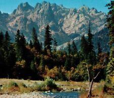 Castle Crags State Park Northern California Mirro-Krome Vintage Postcard