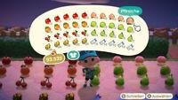 Früchte, Golderze und Meilentickets | Animal Crossing New Horizons