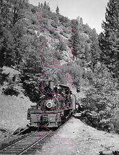 West Side Lumber Co. (WSL) Engine 10 at Tuolumne, CA in 1959 - 8x10 Photo