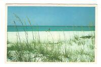 Virginia Beach Virginia Vintage Postcard AN78