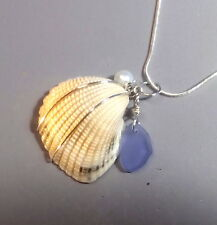 BWT- Gulf Coast Genuine Found Beach Shell Sterling Silver Pendant Nc2431 Seaglas