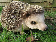 BRAND NEW PYGMY HEDGEHOG GARDEN ORNAMENT