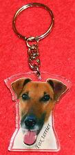 porte clés chien fox terrier poil lisse 7