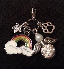 Rainbow bridge, shamballa guardian angel, pet paw + star pet perte clip on charm