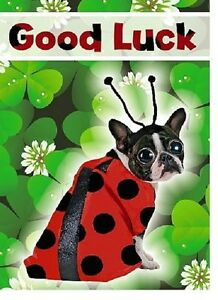 Good Luck French Bulldog Funny Luxury 3D Holographic Greeting Card Dog Lovers