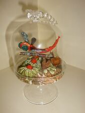 Vintage Style Faux Taxidermy of a Dragonfly in Terrarium with Dragonfly Dome