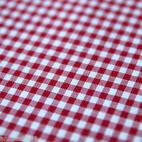 Baumwollstoff Check Karo Vichy Rot Weiß 5mm Groß Karierter Stoff Baumwole